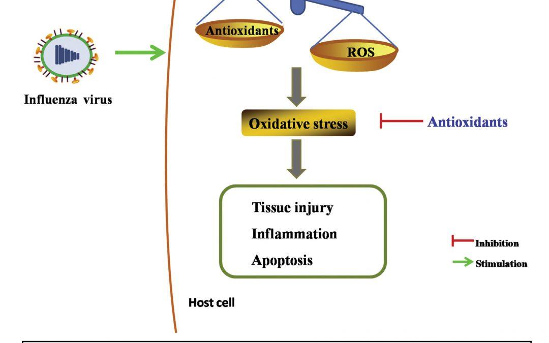 Oxidative Stress in Influenza Virus Infection